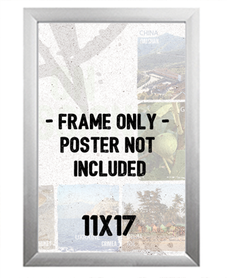 "11"" x 17"" Front Load Snap Frame"